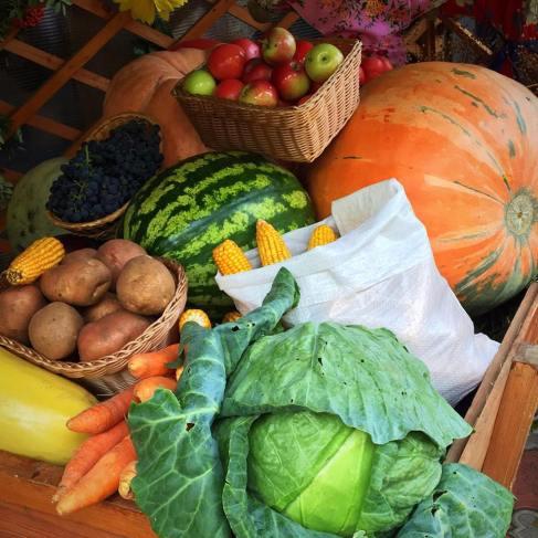 kinel-agricultural-fair